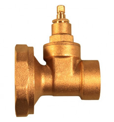 Pair Of Pump Valves Copper Gate Female 1""